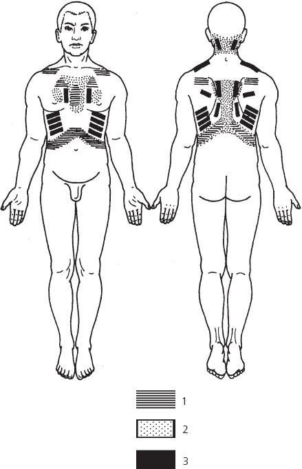 Читать онлайн Лечебные точки организма: снимаем боли в сердце и в области живота