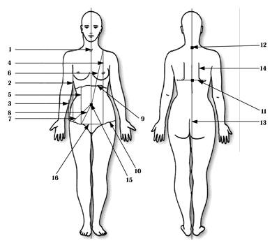 Ситтель упражнения для внутренних органов
