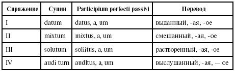 Читать книгу Латинский язык для медиков: конспект лекций