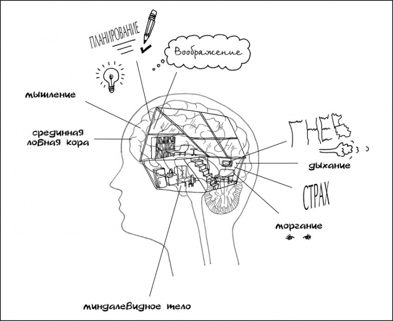 Книга Воспитание с умом. 12 революционных стратегий всестороннего развития мозга вашего ребенка
