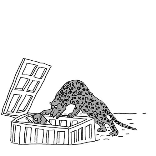 юлия яковлева вдруг охотник выбегает fb2